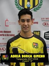 ADRIA DORCA