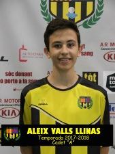 ALEIX VALLS