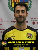 ANGEL ROBLES