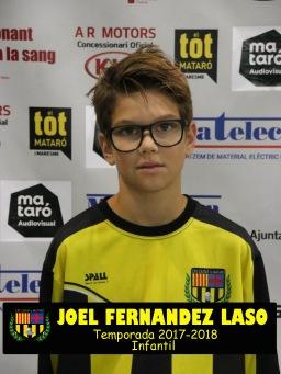 JOEL FERNANDEZ