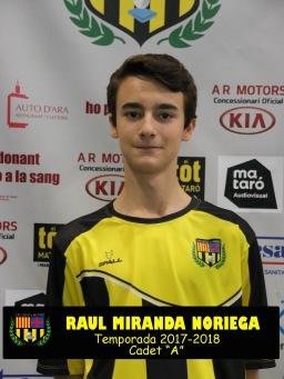 RAUL MIRANDA